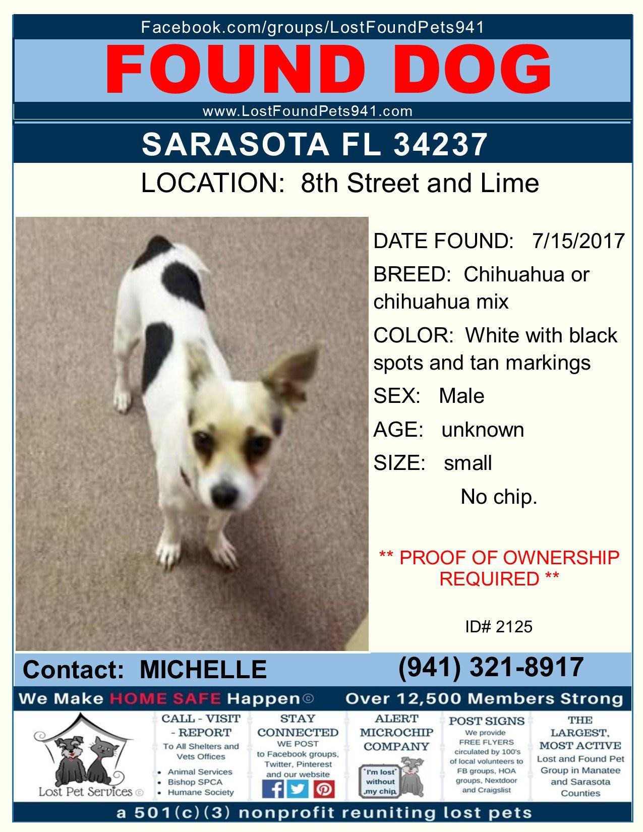 Do You Know Me Found Dog Missingpets Myakkacity 34251