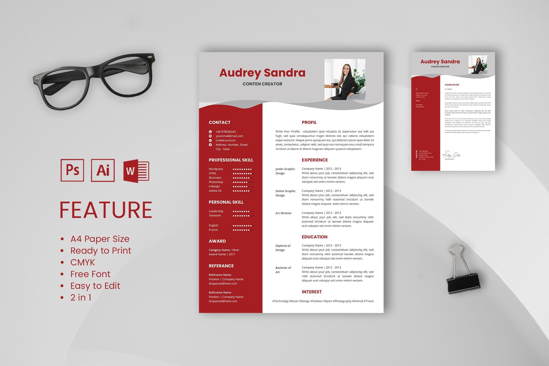 Cv resume content creator profile 2 in 2020 resume cv