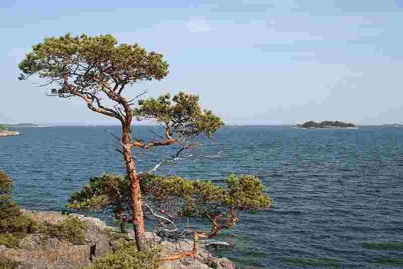 Turun saaristo