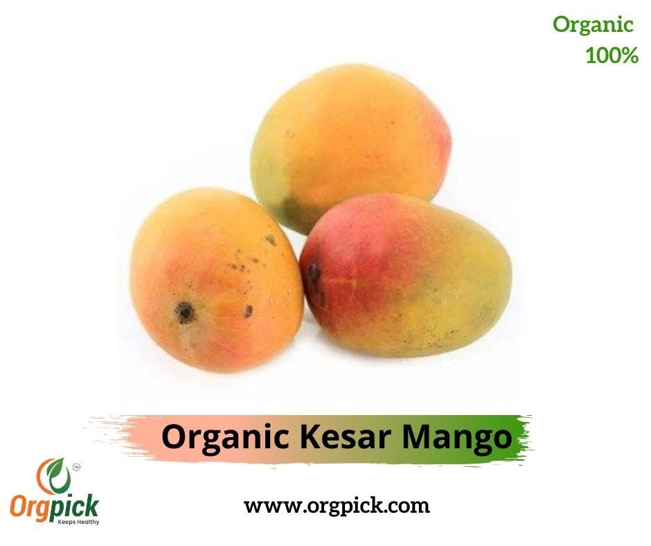 Buy Kesar Amba Online Organic Kesar Mango Mango Organic Healthy