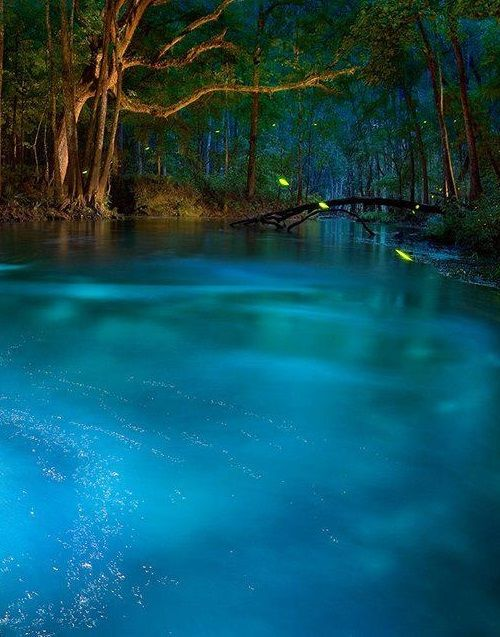 This Natural Spring Looks Like Something Out Of A Dream But It S Real You Can Visit It Right Here In The Usa Places To Visit State Parks Places To Travel