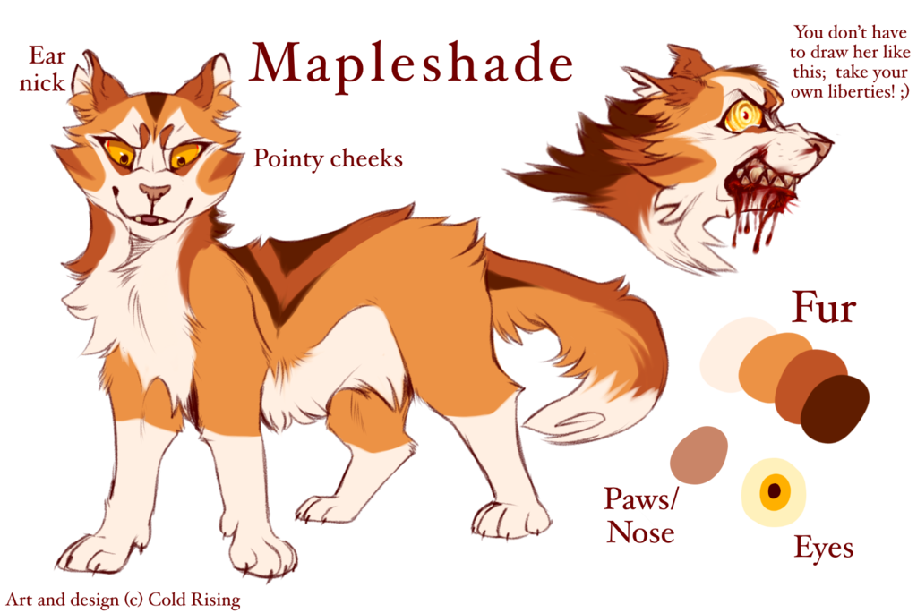 Mapleshade By Cold Rising With Images Warrior Cats Art