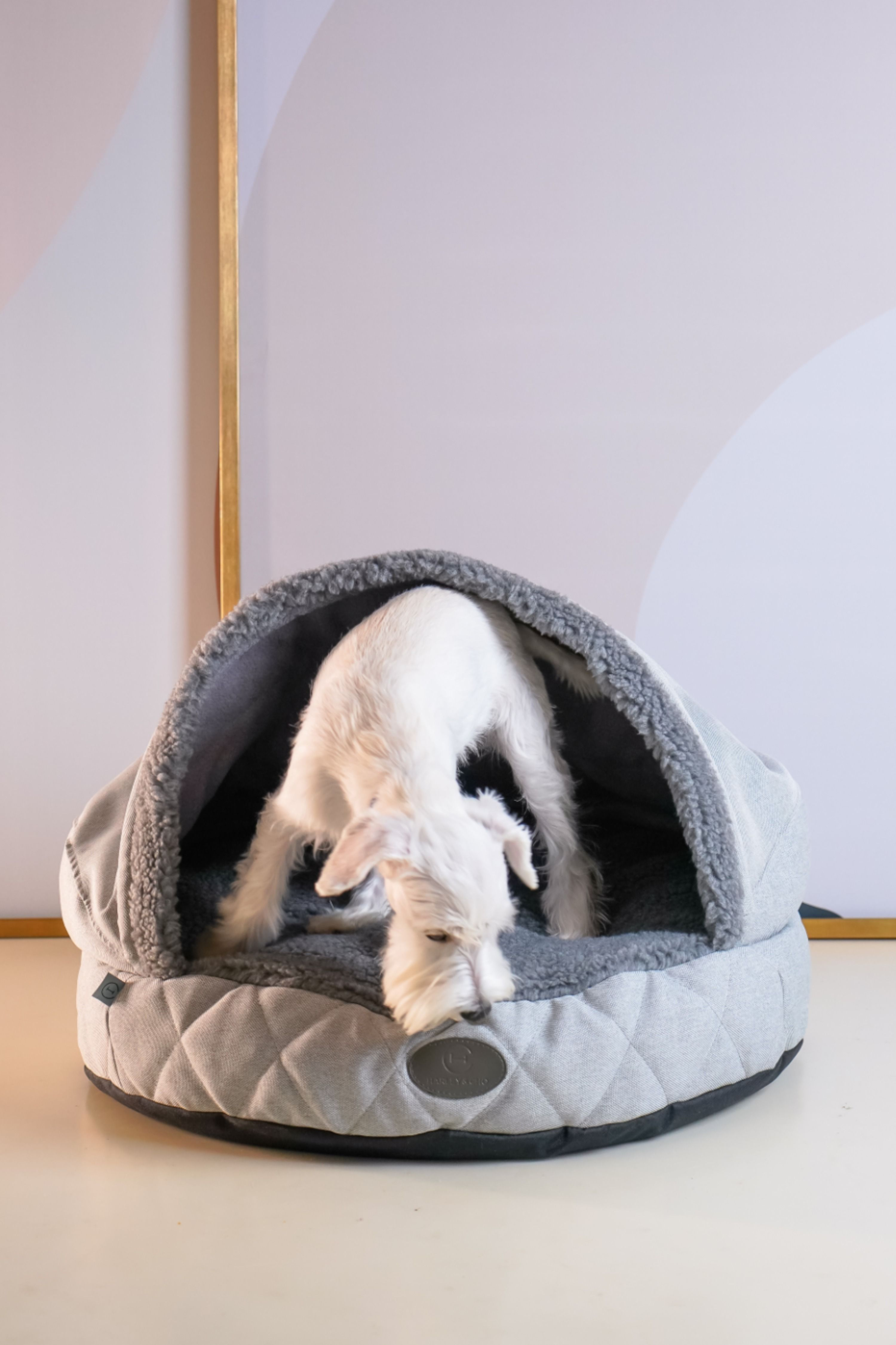 Plush Cave Bed For Dog Bed Cave Snuggly Bedding Italian Greyhound Sleeping Bags Snuggle Bags For Iggy In 2021 Italian Greyhound Pet Safety Dog Bed