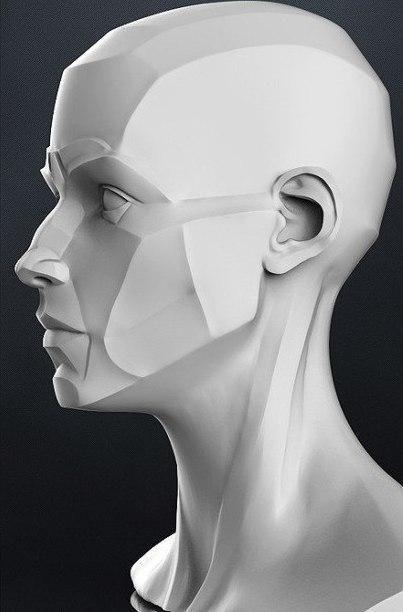 e07dfihf6DE.jpg 403×612 пикс | Drawing | Pinterest | Anatomía ...