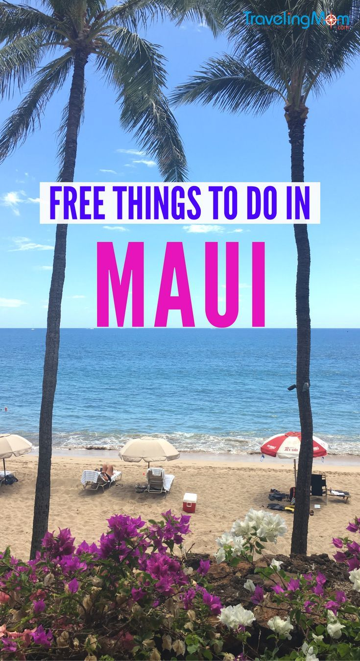 Free Things to Do in Maui Plan Free Kaanapali Family Fun