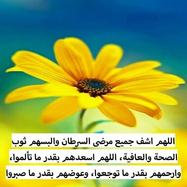 دعاء صلاة رسم كورة مسابقة تصميمي البحرين قطر الإمارات السعودية الكويت سوريا مكة Plants Laos