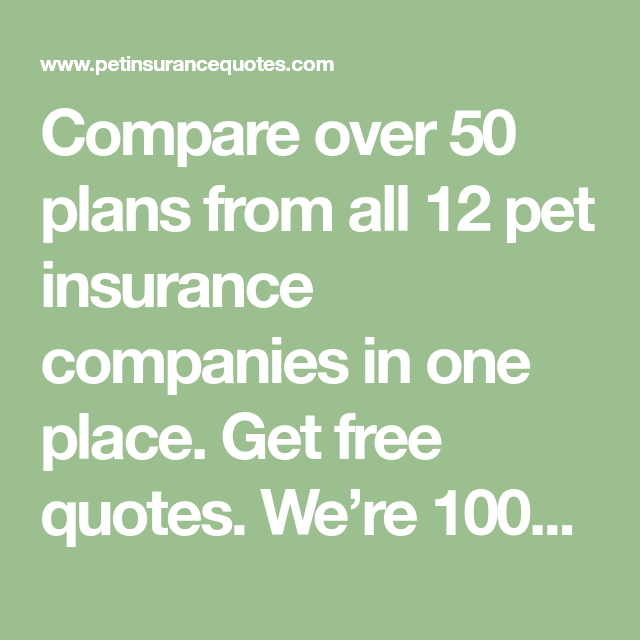 Compare over 50 plans from all 12 pet insurance companies
