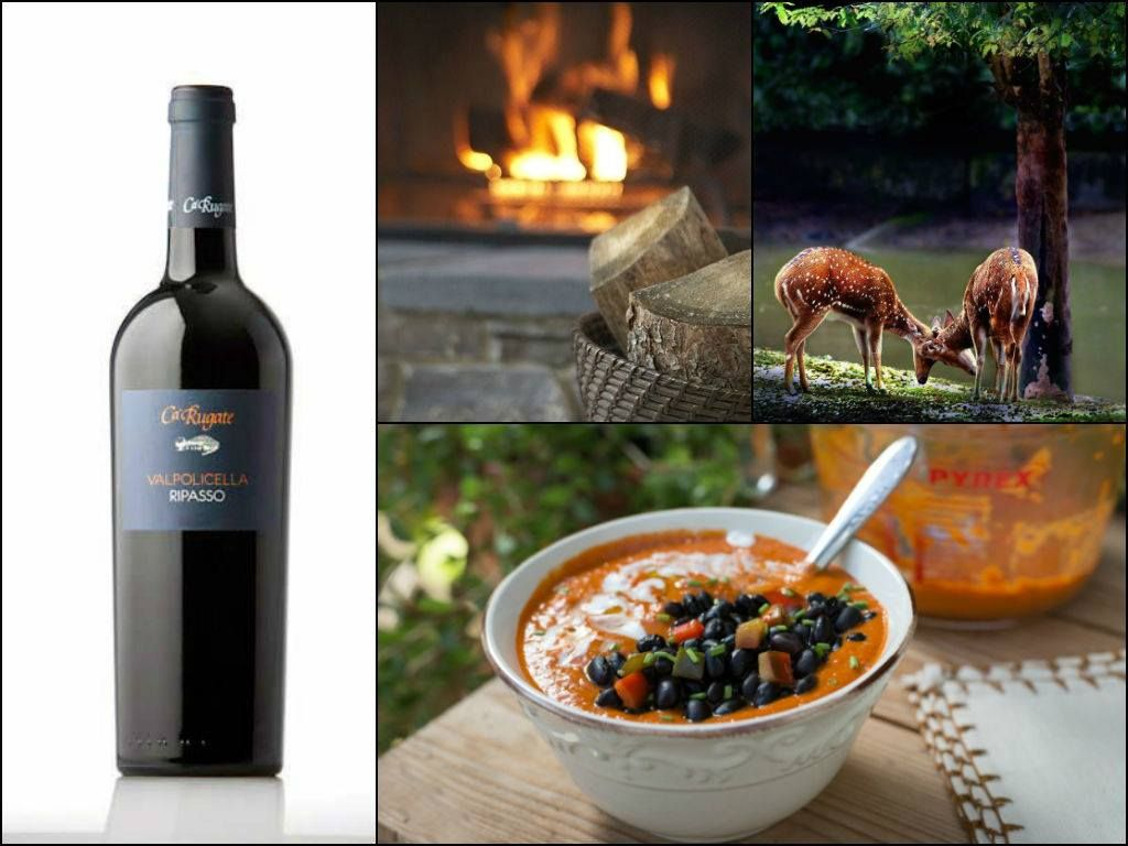 Peppers, blacks beans and coconut milk. Strange ingredients that joined together create a special dish (http://bit.ly/1qRhjx9).  Pair it with our Valpolicella - Ripasso (http://bit.ly/1koz6N9). It will be a great success!