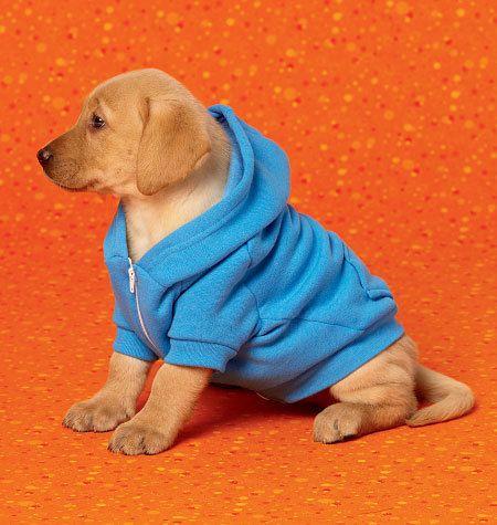 Sewing Pattern Craft Pattern Dog Coat by DesignerAlleyFabrics | Dog ...