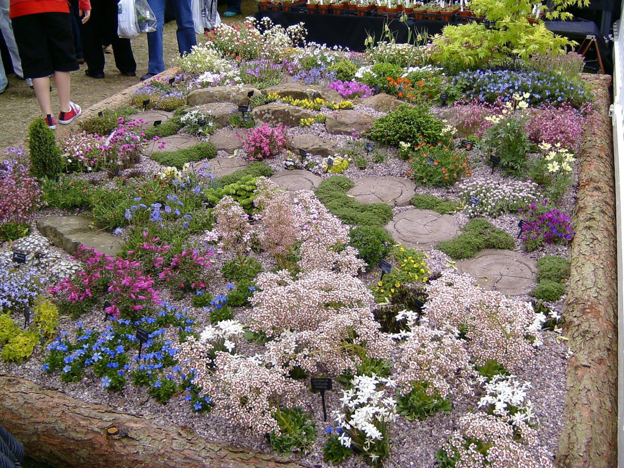 Комнаты идеи дизайна интерьеры u фото gardens yards and plants