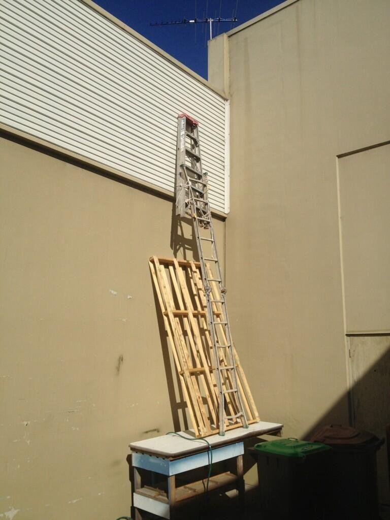Brendan costa on safety ladder safety fail ladder