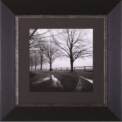 Art Effects After the Rain by Harold Silverman Framed Photographic Print