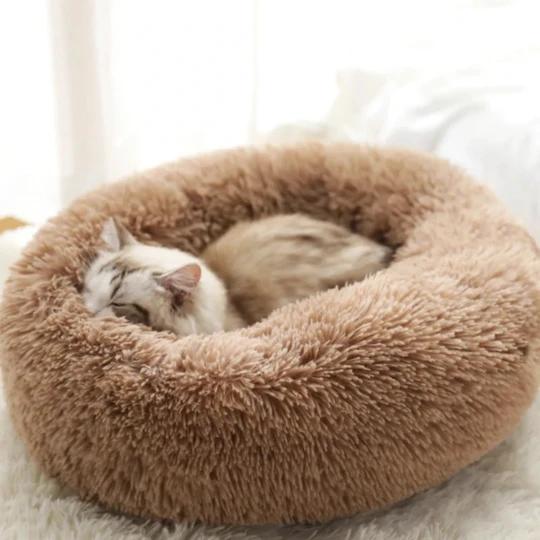 Comfy Calming Pet Bed gekaaget in 2020 Pet bed, Pet