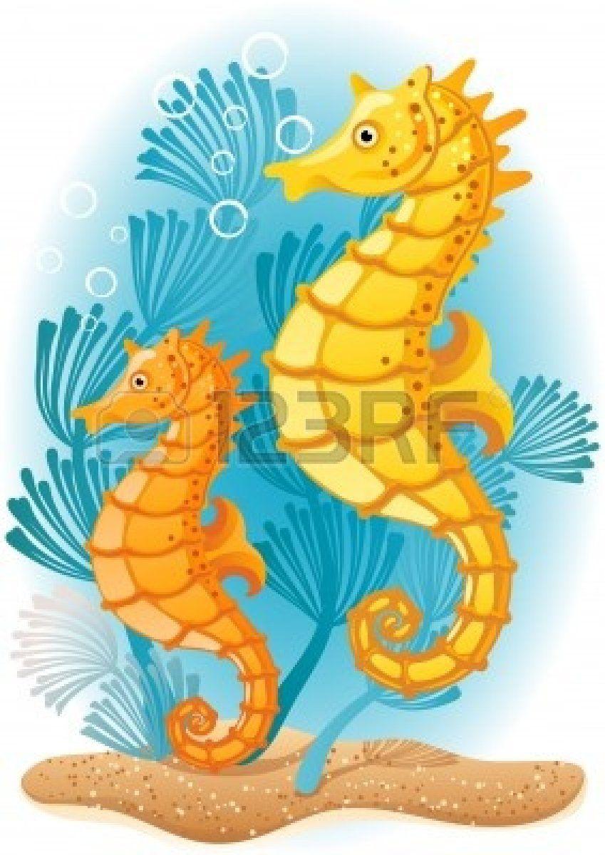 4826886 Ilustracion Vectorial Dos Caballitos De Mar En El Fondo