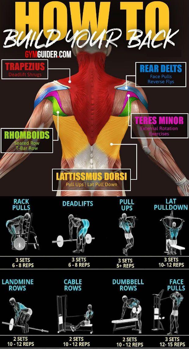 Photo of Lat bewegt sich, um einen perfekten Rücken aufzubauen