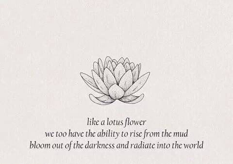 Like A Lotus Flower Spirituality Pinterest Lotus Flower