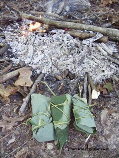 Photo of Primitive cooking methods  DD: Like the shelter ideas, I hope I never NEED to us…