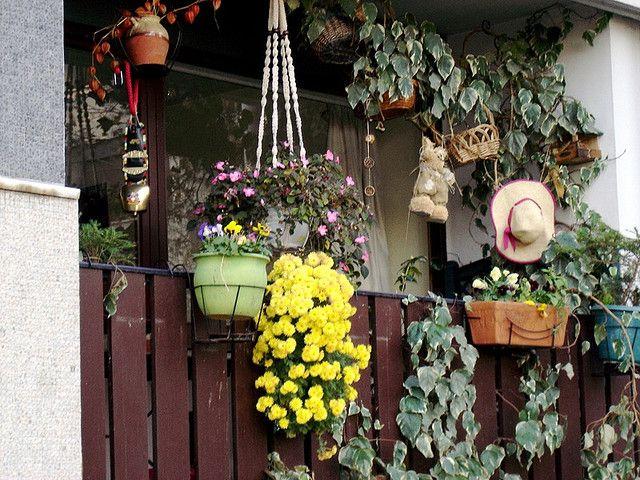 Le balcon de mes voisins
