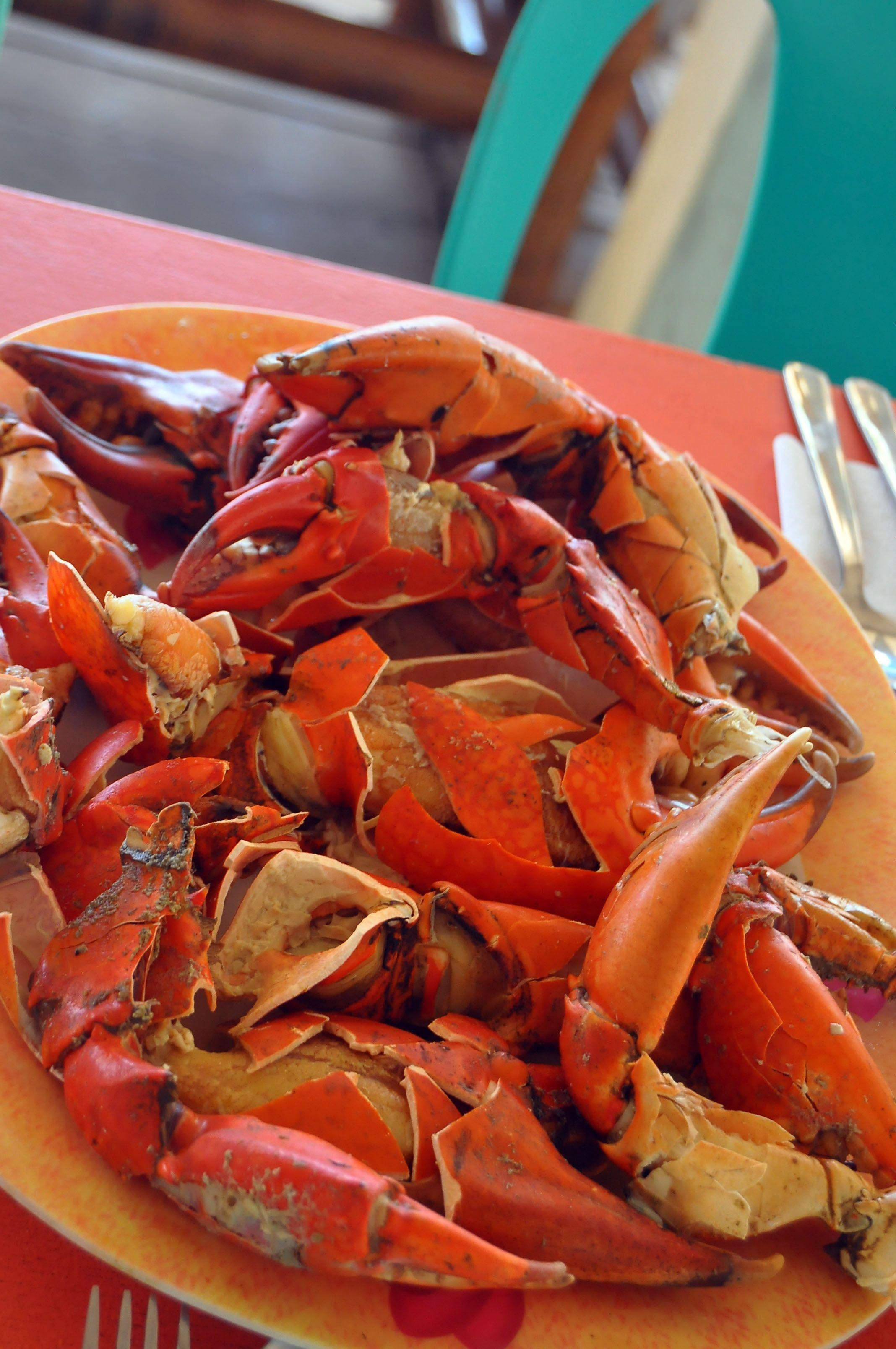 b797306f29f6 Local crabs in Occidental Mindoro.