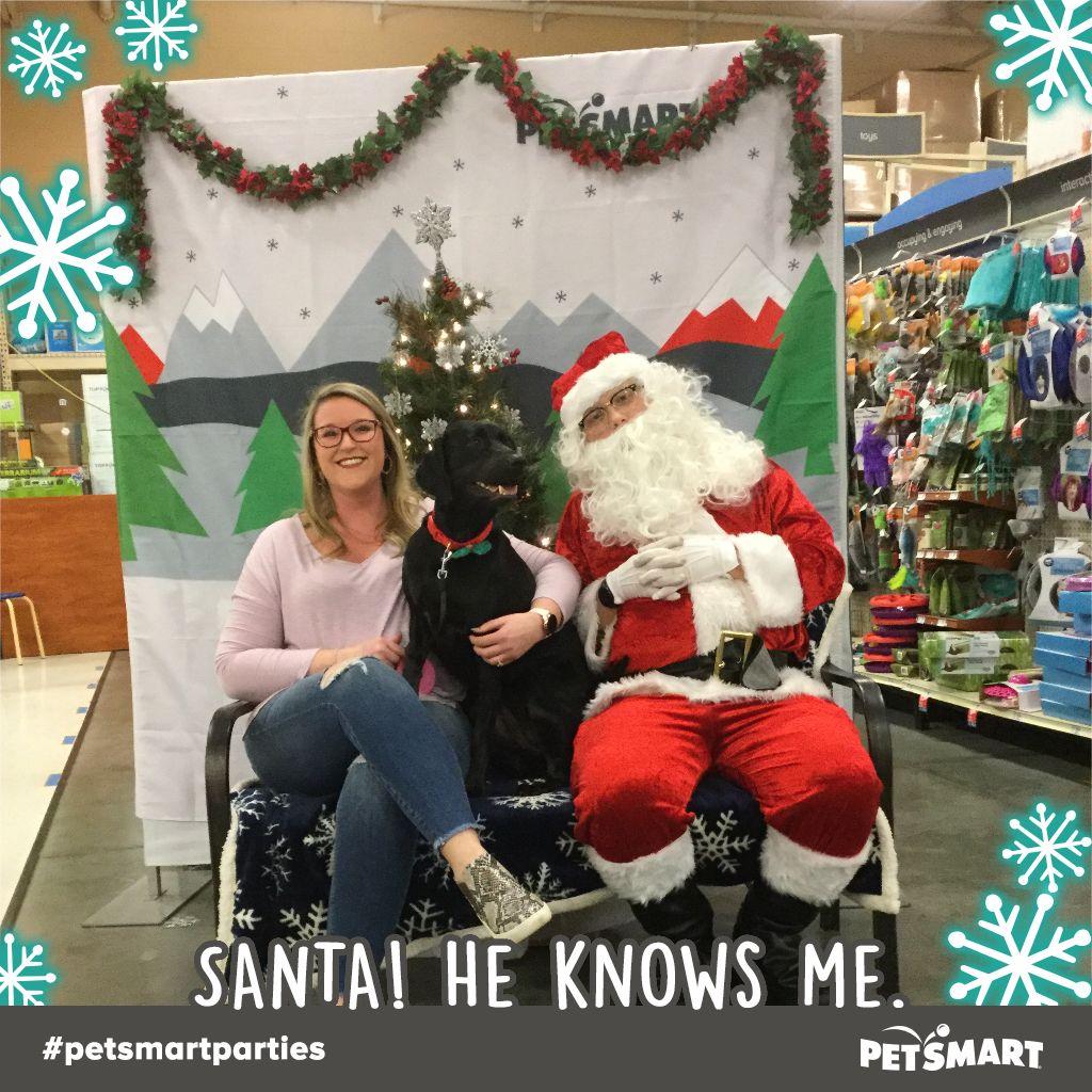 Here S My Pet Photo Christmas Sweaters Animal Photo Petsmart