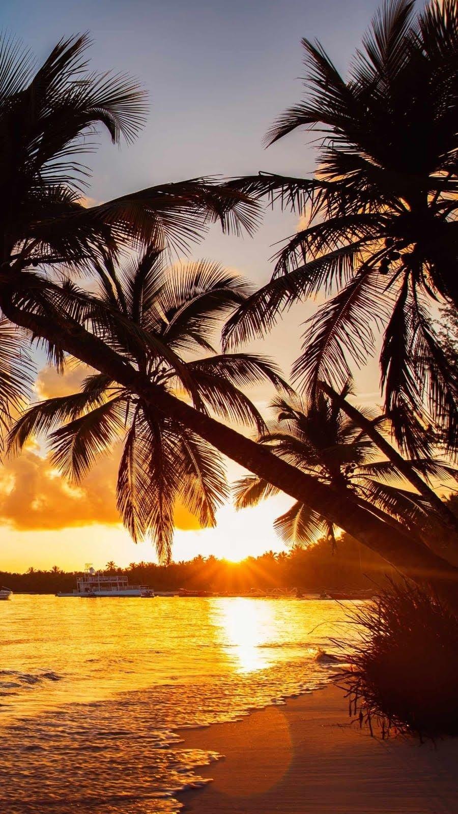 Beaux Paysages Du Monde Photos Coucher De Soleil Plage Photo Paysage Magnifique Photos Paysage