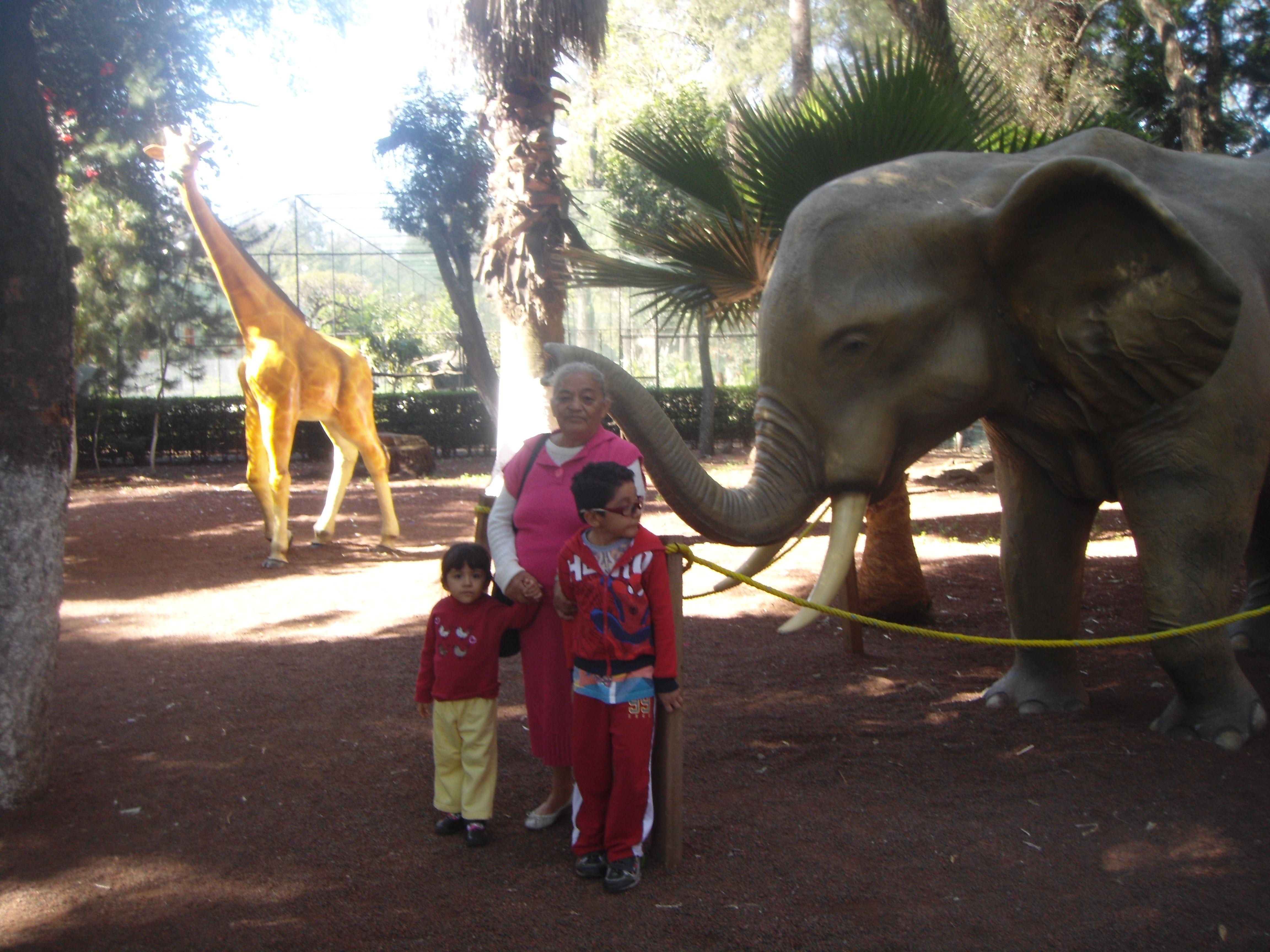 Posando en el Zoo