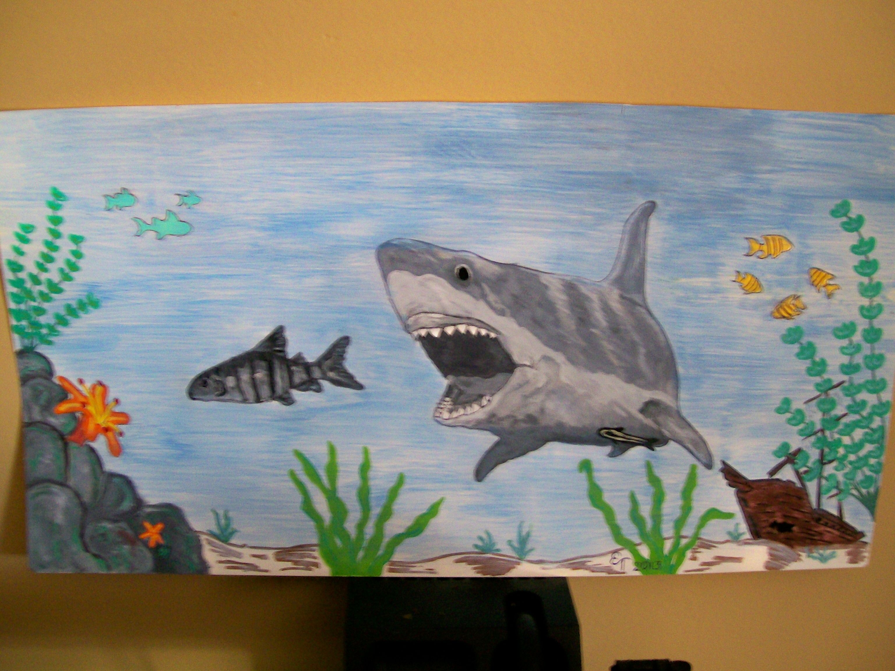 Fish tank painting - Shark Drawing Painting For My Fish Tank Background 2014 Done With Water Colors