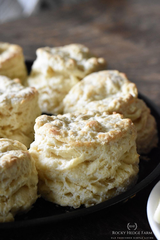 Homemade Old Fashioned Buttermilk Biscuits Rocky Hedge Farm Recipe In 2020 Buttermilk Biscuits Baking Soda Baking Powder Buttermilk Recipes