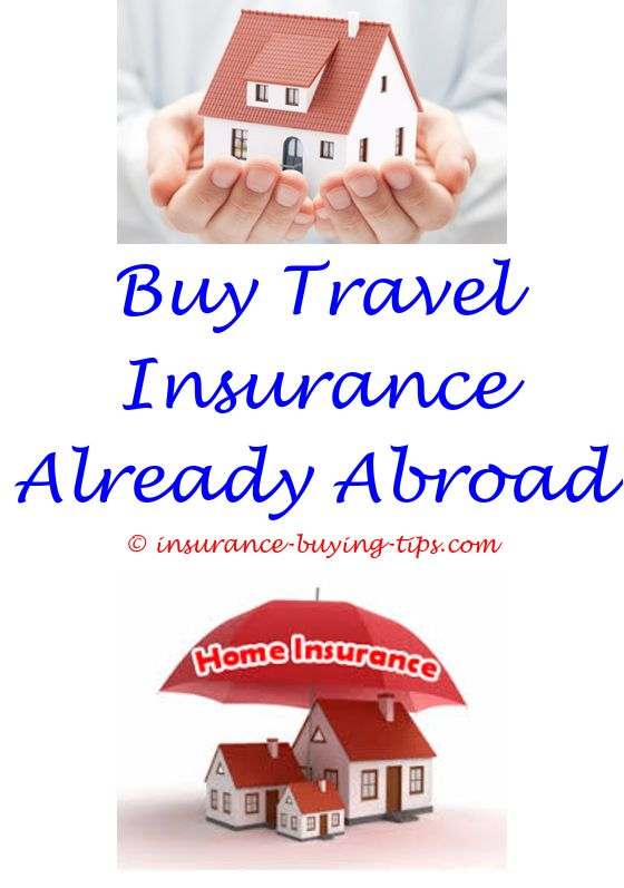 Travelers Insurance Quote Best Car Insurance Quotes  Workers Compensation Insurance And Long