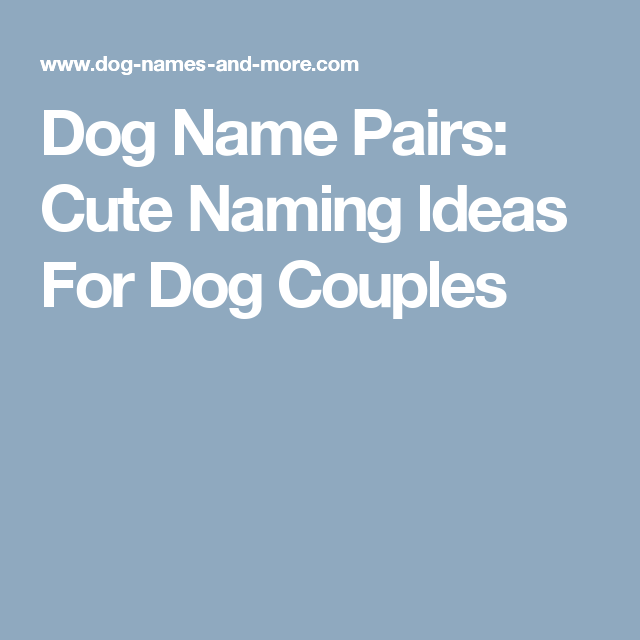Dog Name Pairs Cute Naming Ideas For Dog Couples Dog