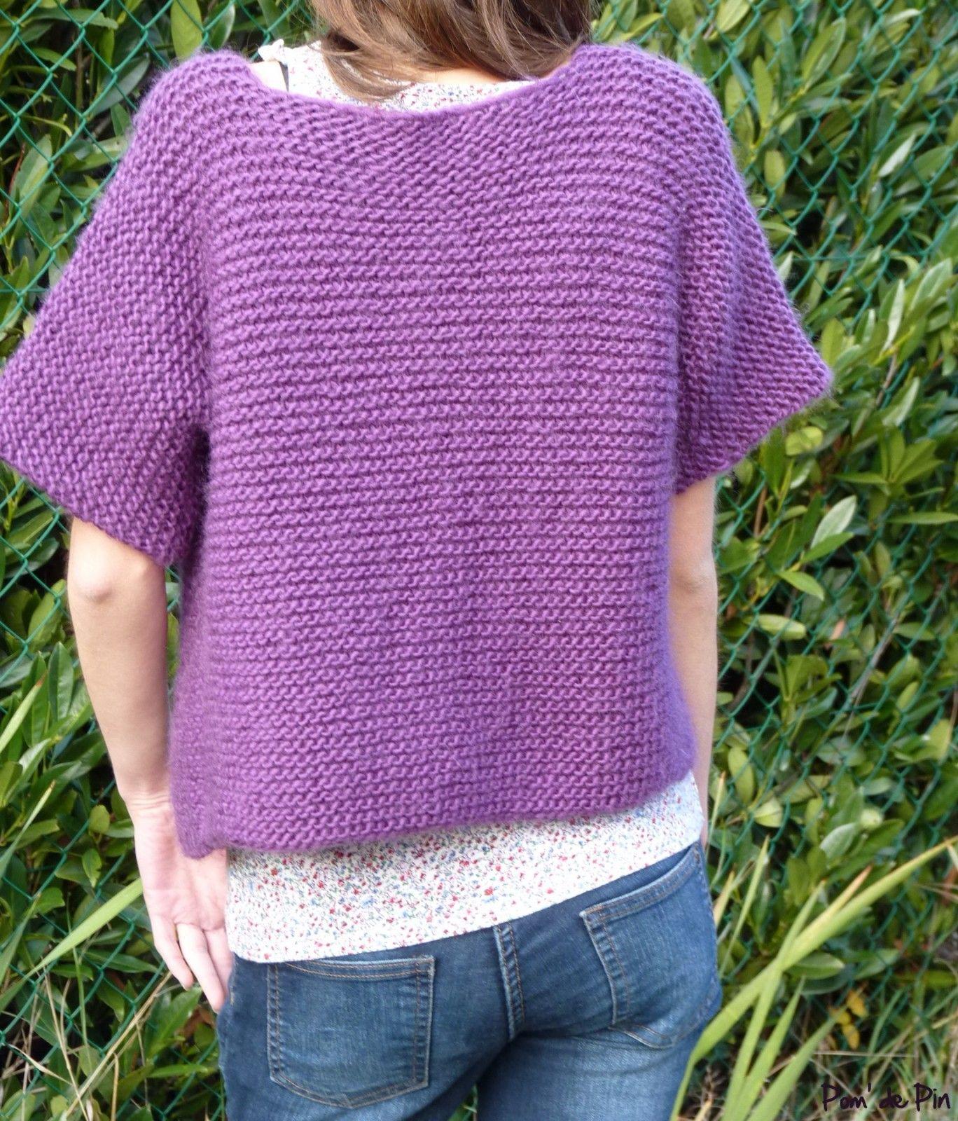 modele tricot pull tube gratuit