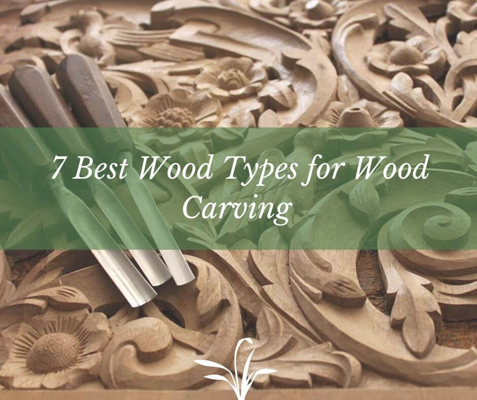 Best Wood Types For Wood Carving In 2020 Types Of Wood Wood Carving Carving