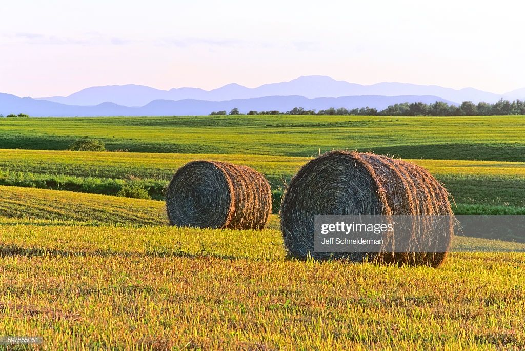 Hay Rolls Photos Vermont Landscape Photography Farm