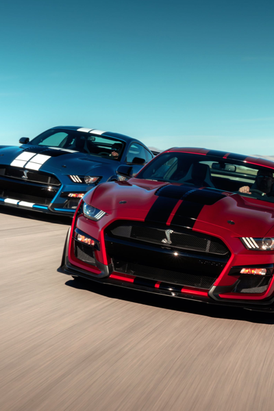 Mustang Shelby Gt500 In 2020 Mustang Shelby Shelby Gt500 Ford Mustang Shelby Gt500