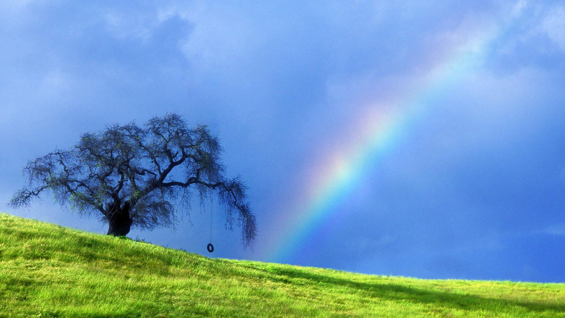 30 Beautiful Rainbows And Lightnings Full Hd Wallpapers Rainbow Wallpaper Beautiful Rainbow Nature Wallpaper