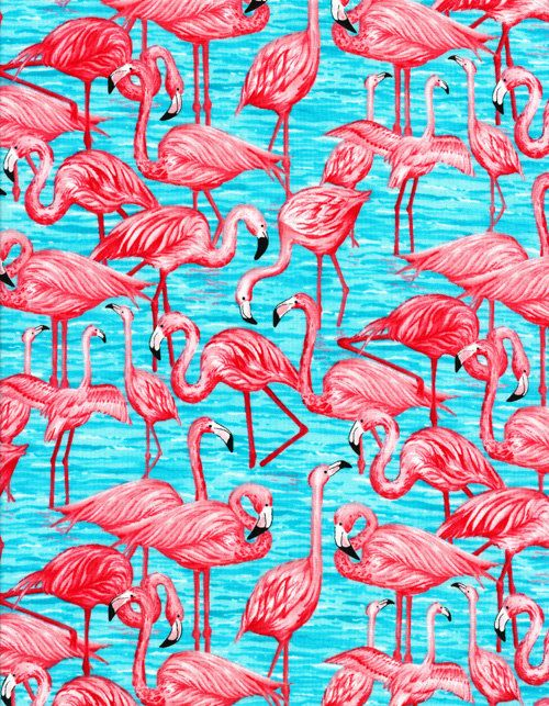 Timeless Treasures Fun Pink Flamingo Fabric 1 Yard
