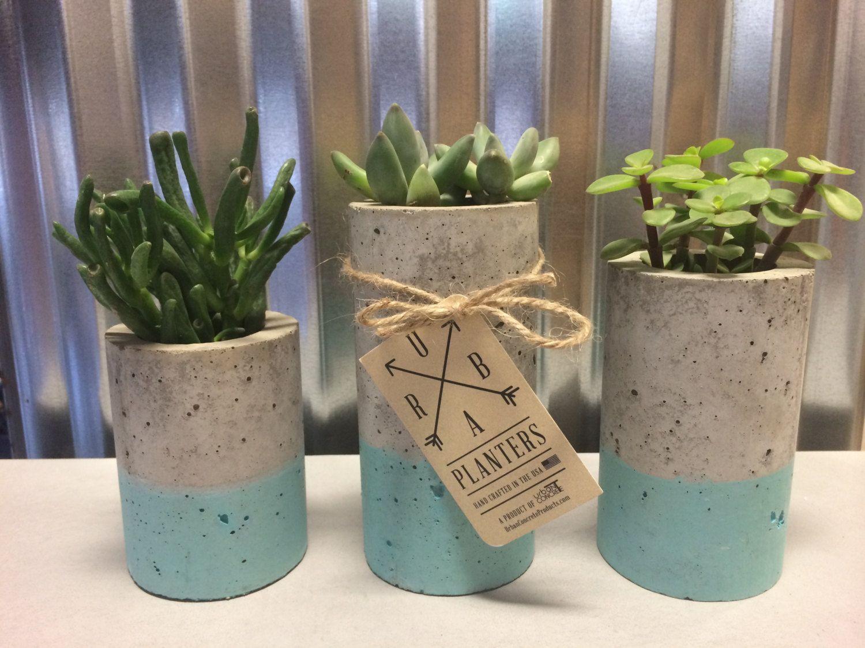 Concrete Succulent Planters/Air Plant Planters. (set of 3). Blue ...