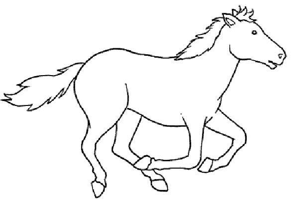 Desenhos Colorir Pintar Cavalos 4 Cavalo Desenho Criancas