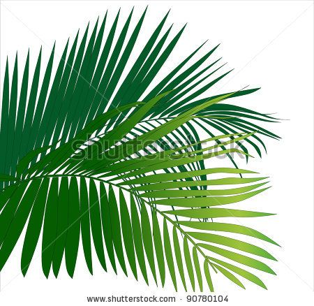 Jungle Trees Clip Art | jungle rainforest leaf plants (tropical ...