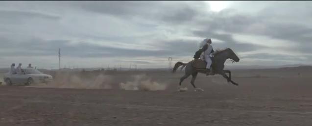 Horse across the desert