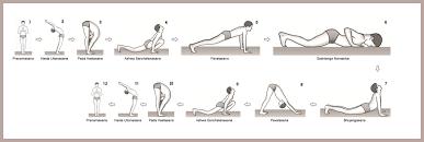 surya namaskar steps  surya namaskar yoga asanas surya