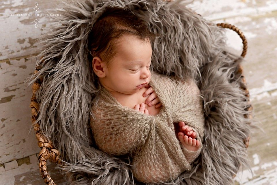 Newborn boy basket fur mohair wrap neutrals wood floor backdrop basket pose newborn posing toes fingers