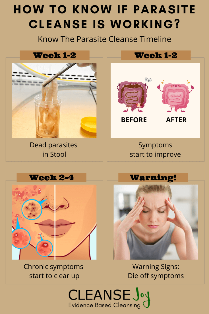 How Long Does It Take To Detox