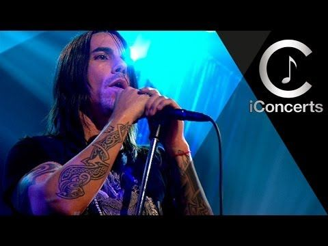 Red Hot Chili Peppers - Snow (Hey Oh) (Official live) - YouTube