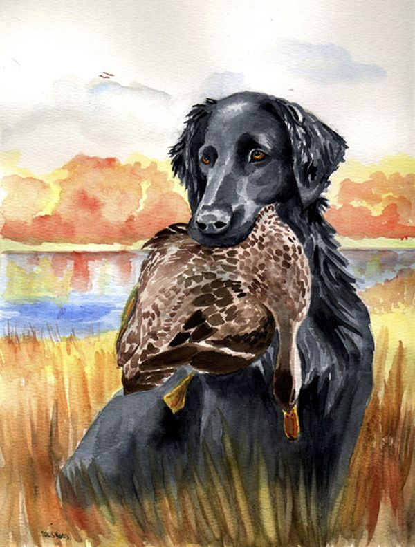 Flat Coated Retriever 2-Sided Garden Flag | Products | Pinterest