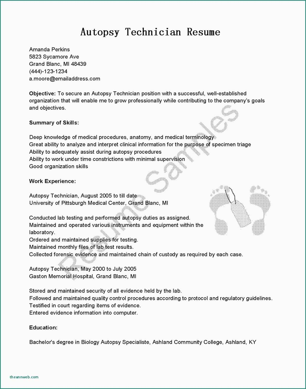 25 Cover Letter Template Google Docs