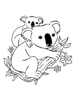 Baby Koala On Mother 39 S Back Coloring Page Super Coloring