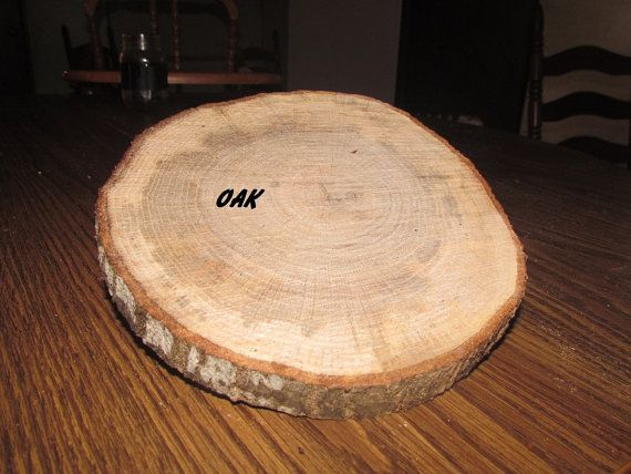Set Of Eight 10 Inch To 12 Diameter Oak Wood Slices 3 4