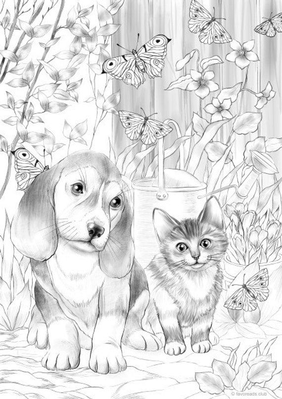 картинки кота и собаки распечатать