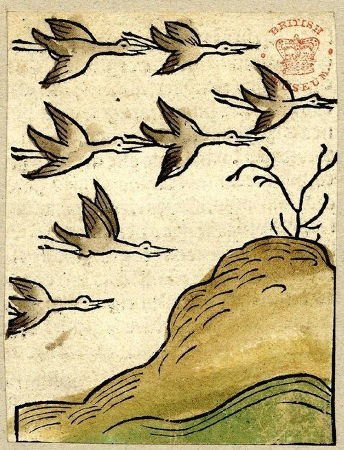 Jacob Meydenbach, from 'Ortus Sanitatis' , Mainz, Germany, 1491. Woodcut with hand-colouring)